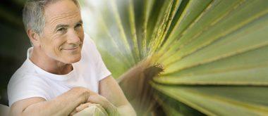 Sägepalme für Andropause und männliche Gesundheit