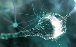 Die Andropause und ihre Auswirkungen auf die kognitiven Funktionen
