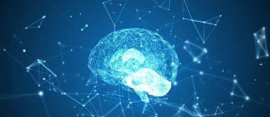 Wie altersbedinge Gedächtnisprobleme mithilfe von Folsäure reduziert werden können 1