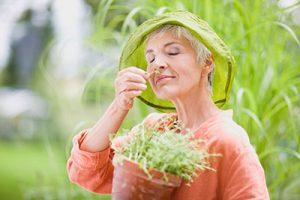 Entzündungen hemmen – Alterungsprozess aufhalten