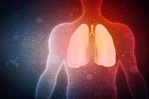 Flavonoide schützen die Lungengesundheit, wenn Sie altern 1