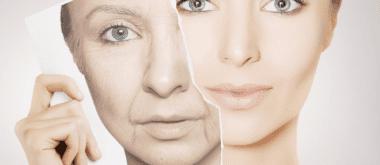 Pflanzlicher Stoff kann Alterungsprozess verlangsamen