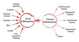 Wie sich Entzündungsvorgänge mit dem Alter verändern 1
