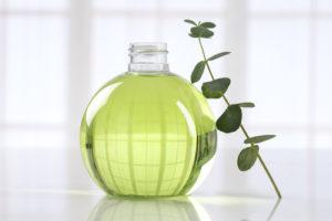 Eukalyptus und seine vielen Vorteile für die Gesundheit älterer Menschen 1